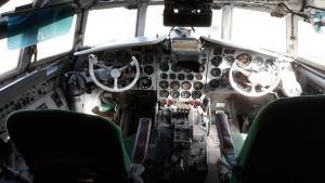 IL-18